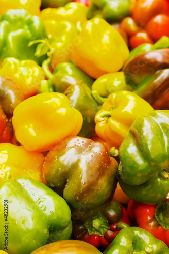 Many Color Bell Peppers
