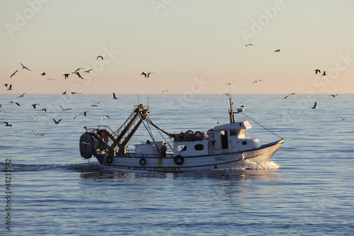 canvas print picture Fishing boat returning to home harbor with lots of seagulls