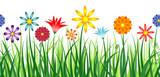 Fototapety Flower Border