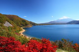 Mt. Fuji and Lake Motosu in autumn, Japan