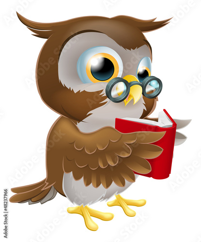 Cartoon Owl Reading a Book