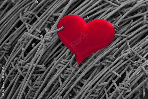 red heart on barbed wired background