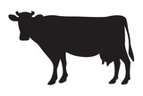 Cow silhouette isolated on white