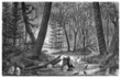 Prehistory : Landscape - Carboniferus