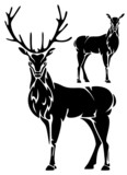 standing deer vector illustration