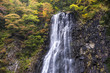 Cascade au Japon - Falls in Japan