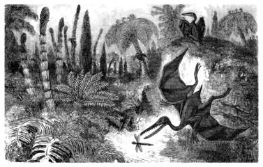 Prehistory (Lias) : Pterosaur