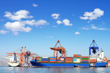 Cargo ship, containers and cranes in sea port