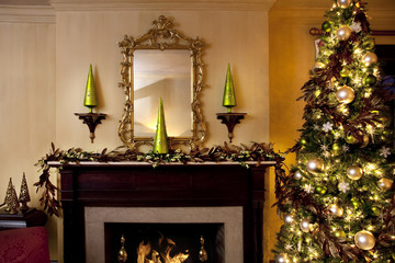 Elegant Living Room Decorated for Christmas