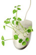 Computer Mouse with Snow Pea Sprouts