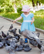 two-year girl feeding pigeons