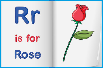 A picture of a rose in a book