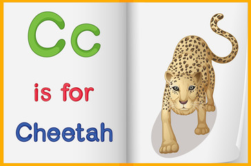 A picture of a cheetah in a book