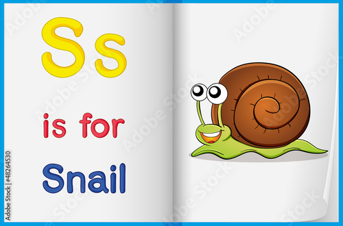 A picture of a snail in a book