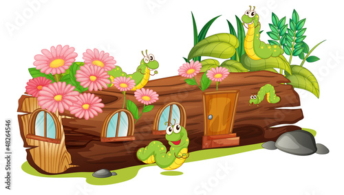 Caterpillars and a wood house