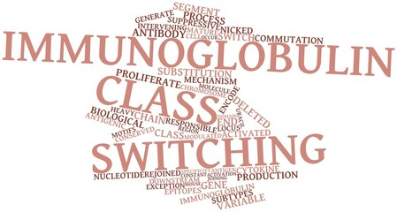 Word cloud for Immunoglobulin class switching