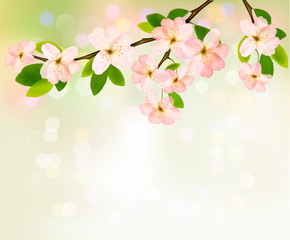 Spring background with blossoming tree brunch with spring flower