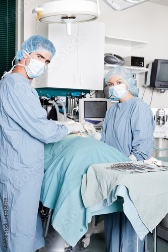 Veterinarian Doctor And Female Assistant Performing A Surgery