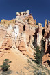 famous view of Bryce Canyon