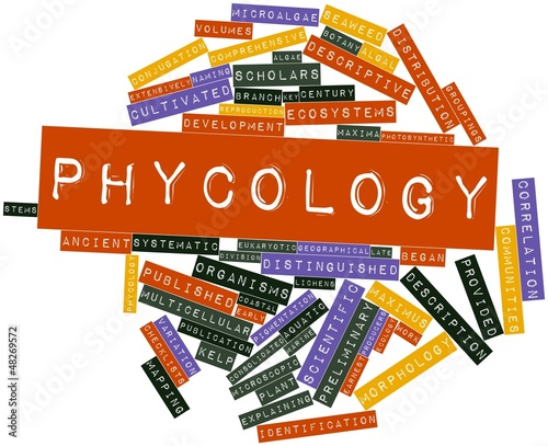 Word cloud for Phycology