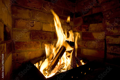 Firewood burn in furnace