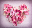 Heart made from pink hydrangea flower petals