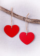 Two wooden red hearts hanging on branch