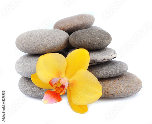 zen stones with orchid flower