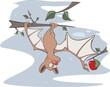 Little cheerful bat. Cartoon