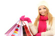 Attractive young woman woman with lot of shopping bags,