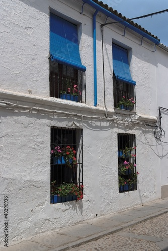 Plastered wall of Mediterranean house with four windows