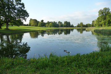 Lake And Tree View In Lydiard Park