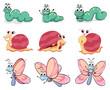 A caterpillar, butterfly and a snail