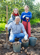 Happy family with harvested potatoes
