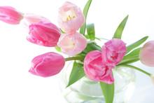 Ikebana z kolorowym tulipanów wiosną