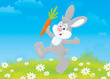 rabbit friendly smiling and jumping with a carrot