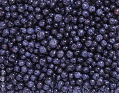 Freshly Blueberries