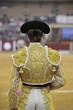 torero - 48305580