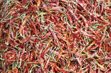 Hot chili's