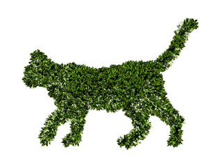 Gatto agricoltura biologica, verde, ecologia, allevamento