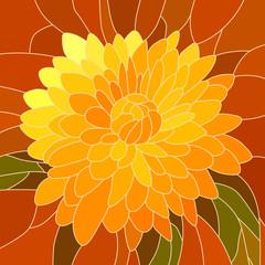 Vector illustration of flower yellow chrysanthemum.