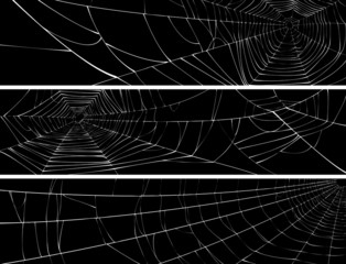 Horizontal banner of web of spider.