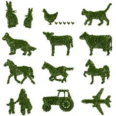 Fattoria, agricoltura biologica, verde, ecologia, allevamento