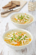 vegetable soup with chicken and parsley