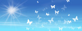 Fototapety butterflies with sun and blue sky