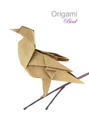 Brown paper origami twitter bird