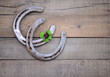 Zwei Hufeisen mit Kleeblatt