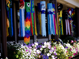 Kites for sale in Florence California USA