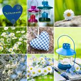 Fototapety Garden collage
