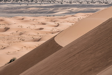 Sand dunes at sunset in the Sahara  in Morocco